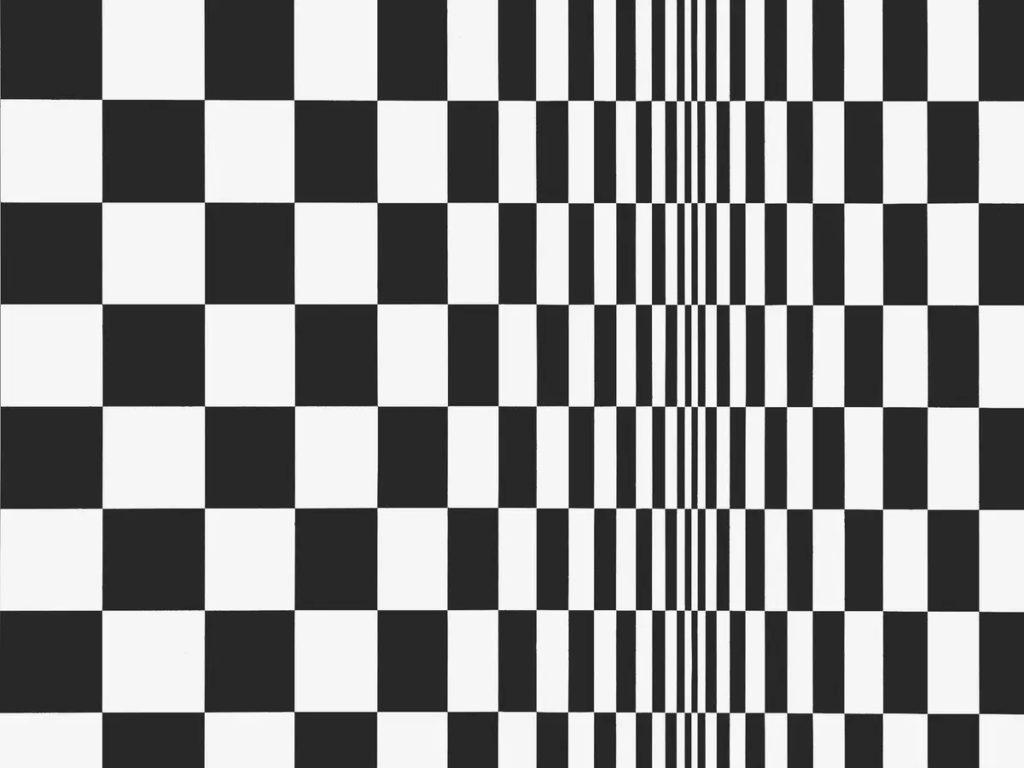 optical art bridget riley